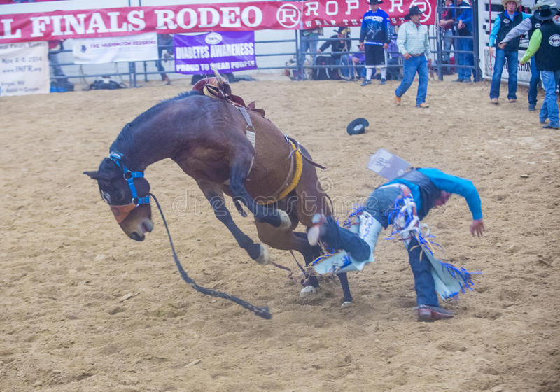 Indian National Finals Rodeo Editorial Stock Photo Image