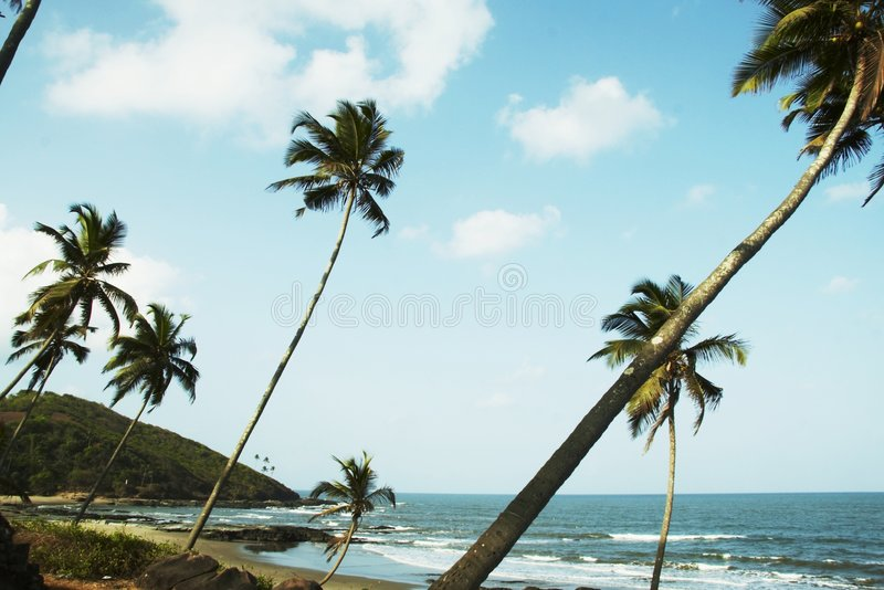 Indian ocean coast. In Goa,Vagator royalty free stock image