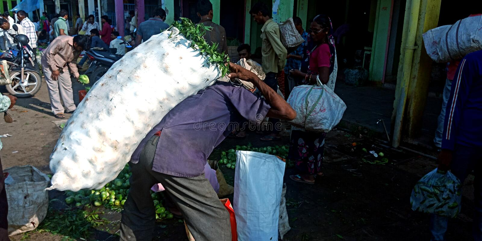 An Indian old man carried over vegetable sack at agriculture produce market stock photos