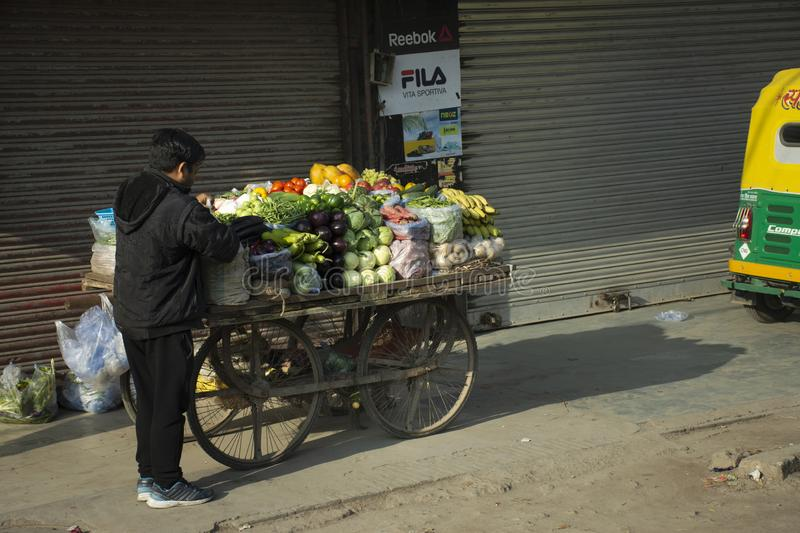 Indian people sale and buy food product fruit vegetable from small local grocery cart in New Delhi, India. Indian people sale and buy food product fruit stock photos