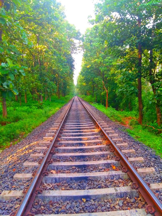 Indian railway. One of the most beautiful railwat tracks in India. Its located in kerala royalty free stock photos