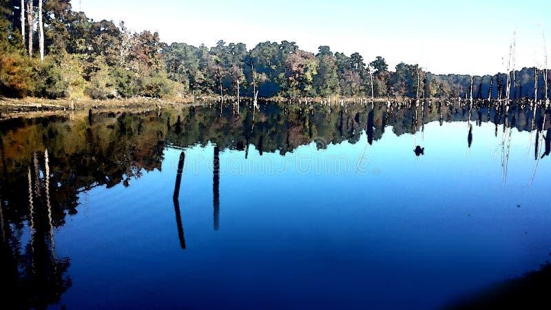 Indian River Rec Area Nature Trail(11-01-2016) Indian River, Alexander State Forest, Evangeline  Parish, La -06 Free Public Domain Cc0 Image