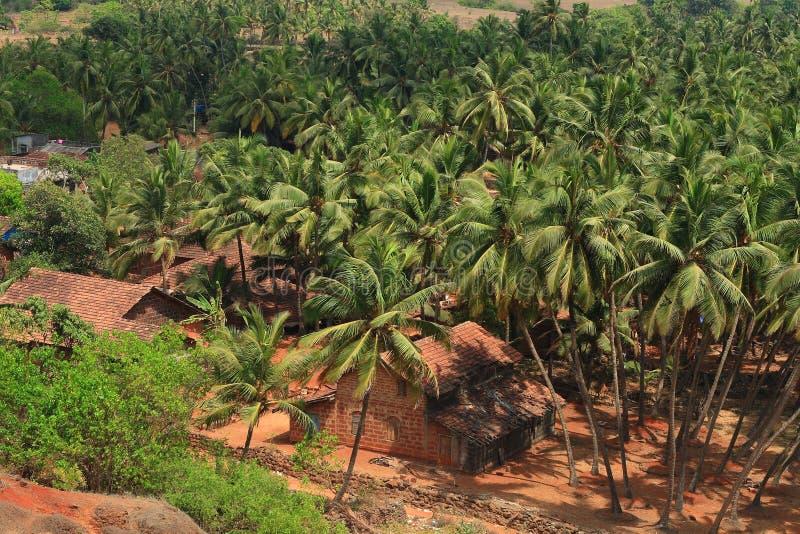 Indian rural landscape stock image