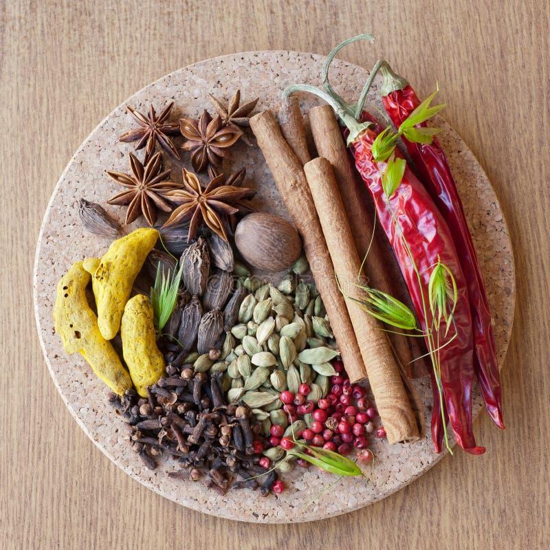 Indian spices: pepper, nutmeg, cinnamon, cloves, c royalty free stock photos