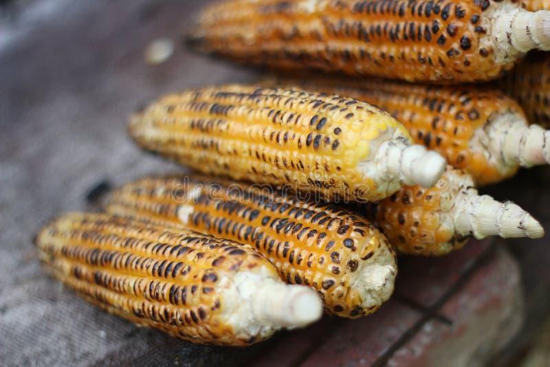 Indian street food. Corn stock images