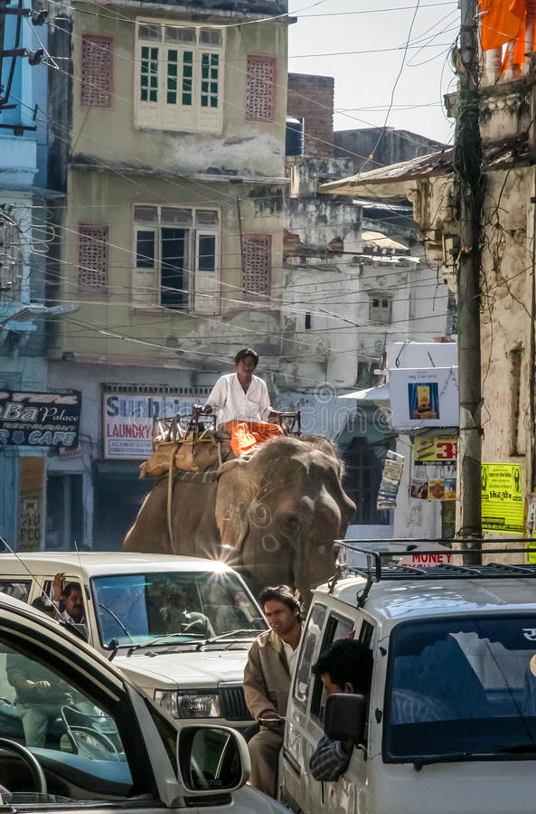 Indian street scene royalty free stock photography