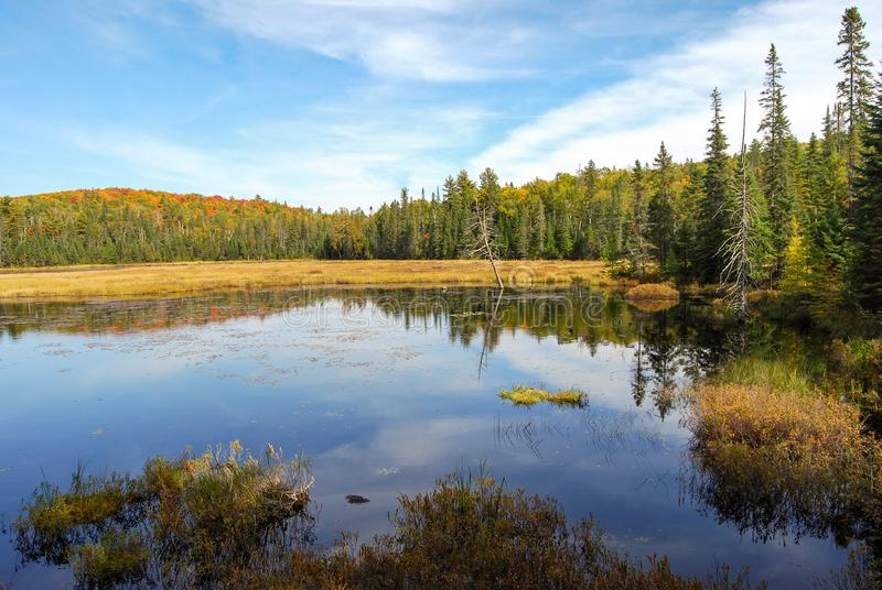 Indian summer at a lake in Algonquin Provincial Park near Toronto in autumn, Canada stock images