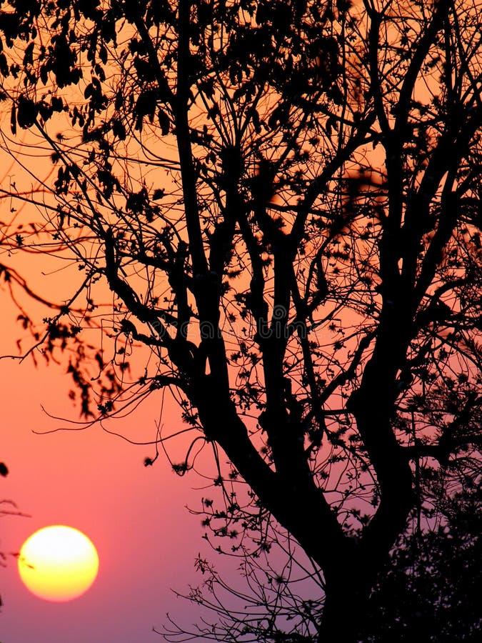 Free Indian Sunrise Stock Photos - 19678903
