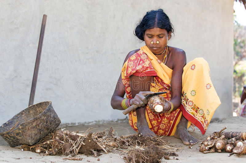 indian tribal women  Indian Tribal Women In The Village Editorial Photography - Image of ...