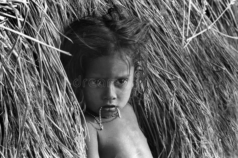 Indian village girl in haystack stock images