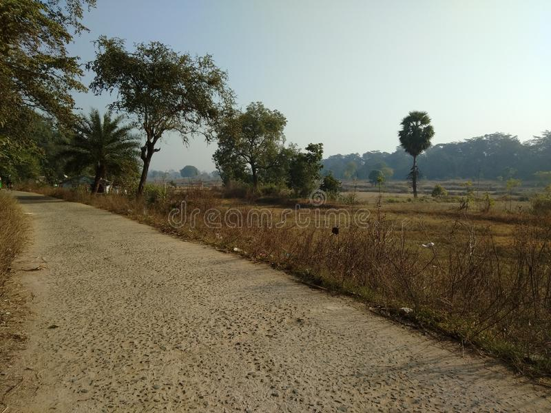 Indian village road and fields stock image
