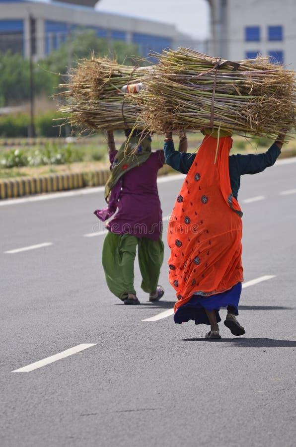 Indian women walking home #12