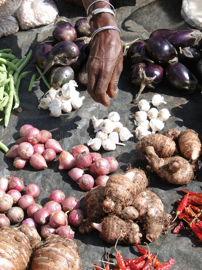 Download Indian Villagers Sell Eggplant Stock Photo - Image: 14254460