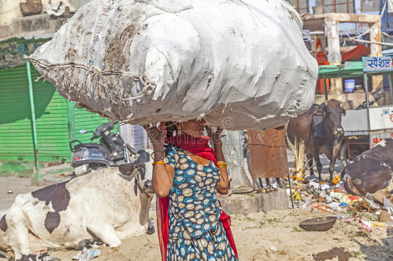 Indian woman carries heavy load on her head. JODHPUR,INDIA - OCTOBER 23: Indian woman carries heavy load on her head on October 23, 2012 in Jodhpur, India stock images