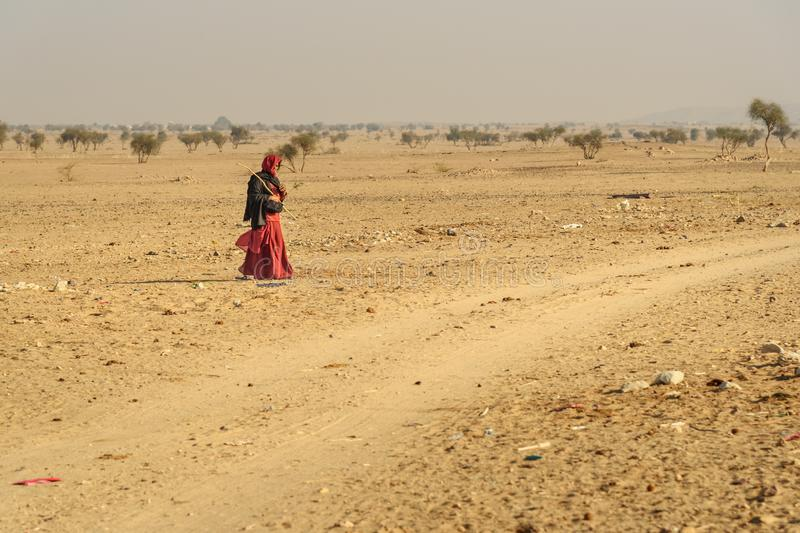 Indian woman in red sari grazing cows near traditional village at Thar desert. Jaisalmer. India. Jaisalmer, India - February 15, 2019: Indian woman in red sari stock photo