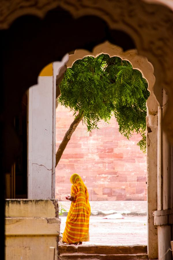 Jodhpur, India - August 20, 2009: Indian woman with sari near a tree inside the Mehrangarh Fort in Jodhpur, India. Indian woman with sari near a tree inside the stock photos