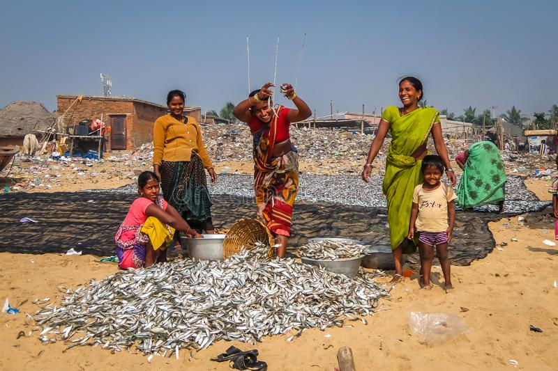 Indian women sorting fish on the beach in Puri. royalty free stock photo