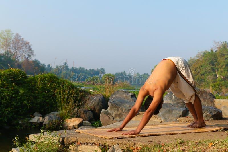 Indian Yogi royalty free stock images