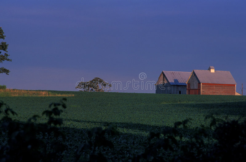 Download Indiana Farm Royalty Free Stock Image - Image: 175976
