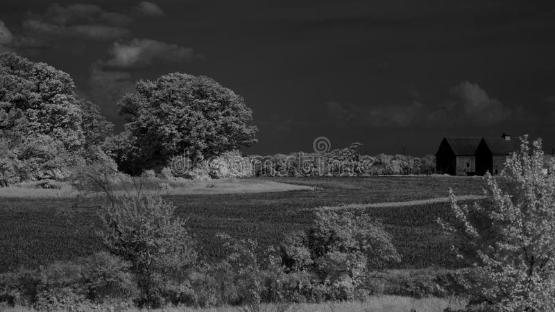 Download Indiana Farm IR stock photo. Image of fields, barn, white - 31178046