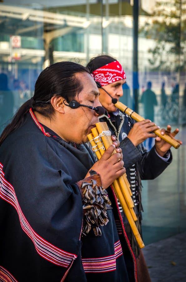 Indianmän i den traditionella infödda dräkten som spelar flöjten arkivfoton