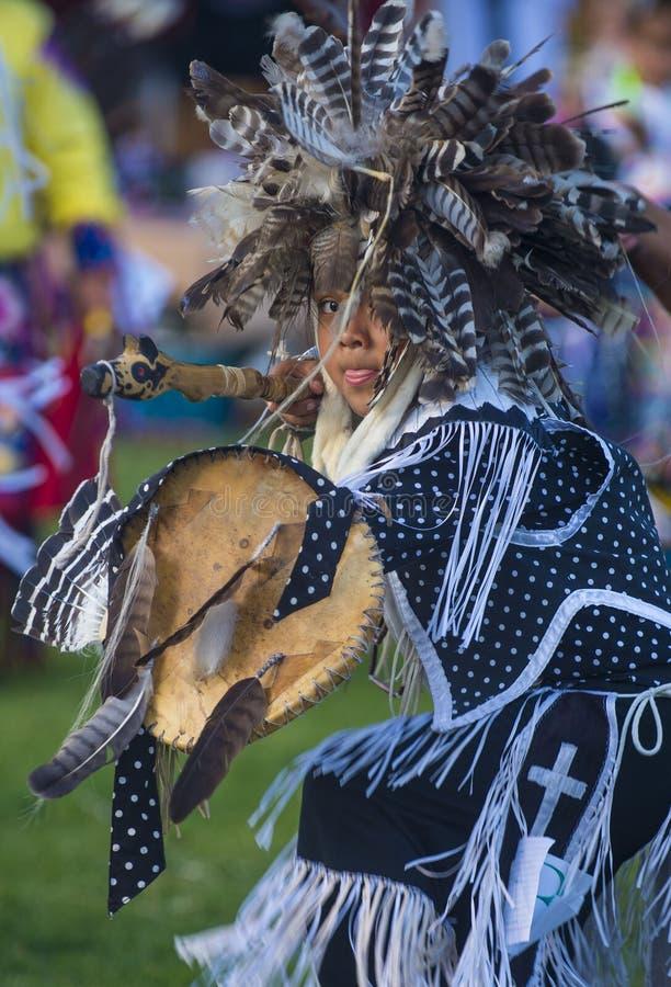 Indiano indigeno immagine stock libera da diritti