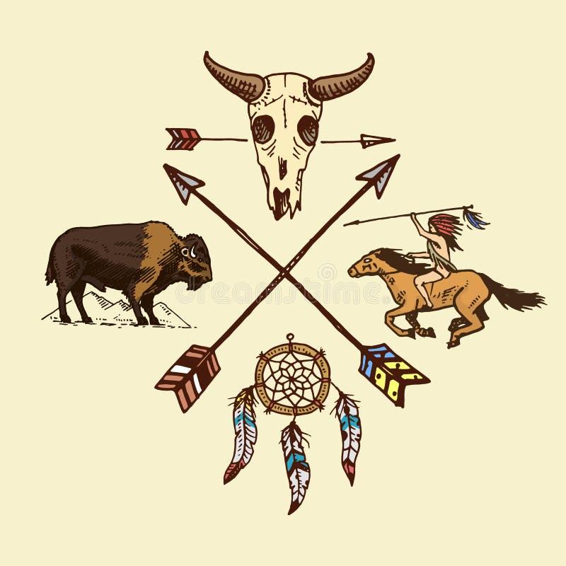 Indiano o nativo americano a cavallo frecce e cranio del bufalo, dreamcatcher e cherokee insieme dell'annata incisa, mano royalty illustrazione gratis