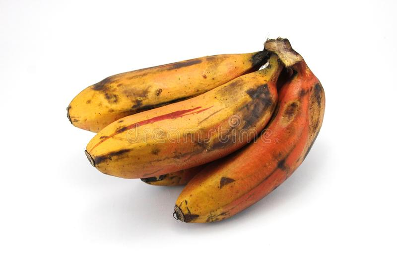 Red Banana Healthy Fruit For Weightloss. Indians best healthy banana is red banana, It is an extremely healthy fruit containing 11 minerals, 6 vitamins, lots of stock photography