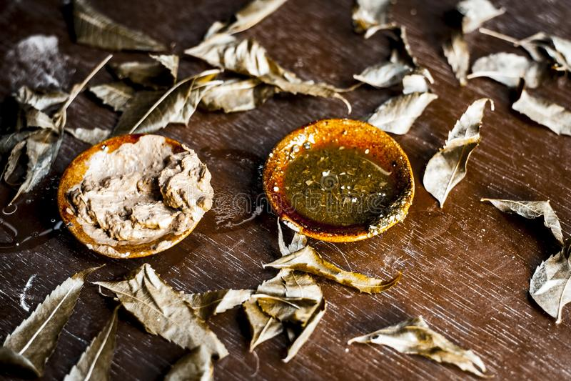 Indica Azadirachta, eller indisk lila eller ansiktsmask för sidor för NEEM-TRÄD med vitlökolja- och citronskivan arkivbilder