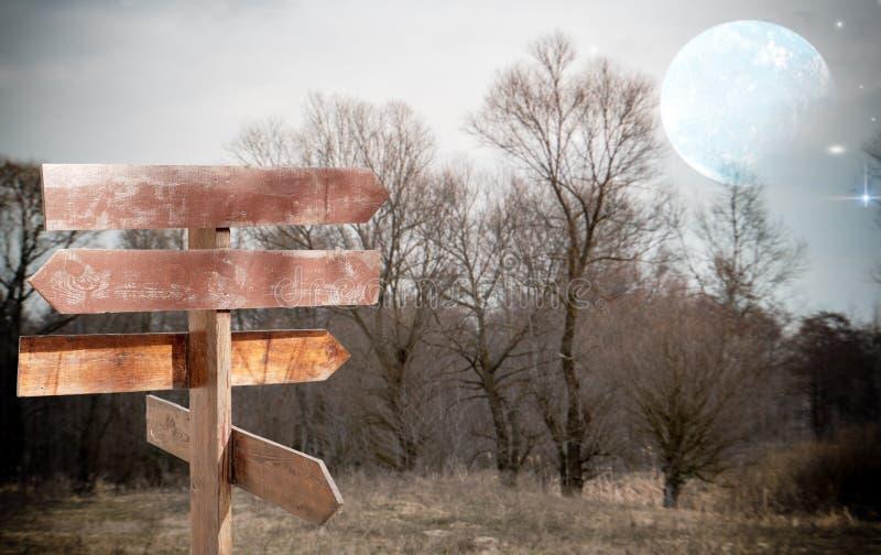 Indicador de dirección en un fondo de árboles y del cielo nocturno stock de ilustración