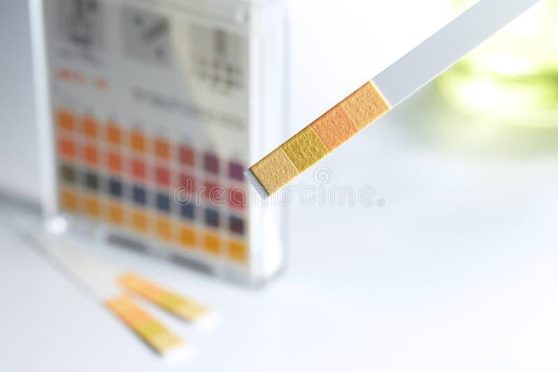 Indicador de pH imagens de stock royalty free
