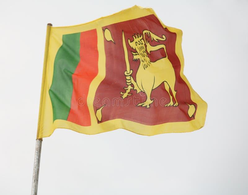 Indicador de Sri Lanka imagen de archivo