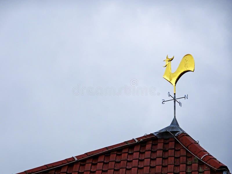 Indicador de vento do galo imagem de stock royalty free