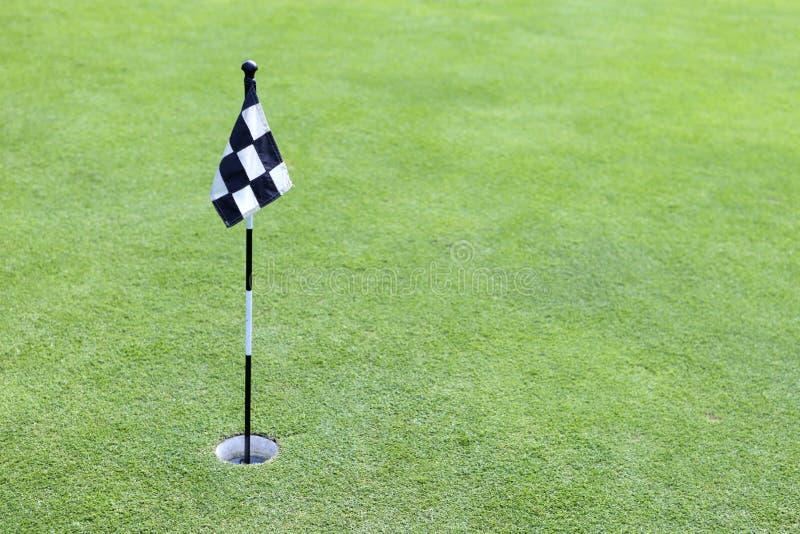Indicador del golf en verde foto de archivo
