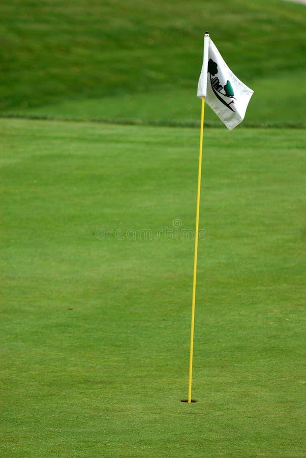 Indicador en el verde en el golf fotografía de archivo