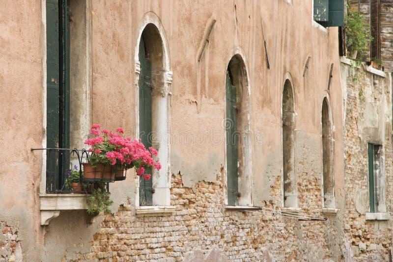 Indicadores e flores arqueados em Italy. foto de stock royalty free
