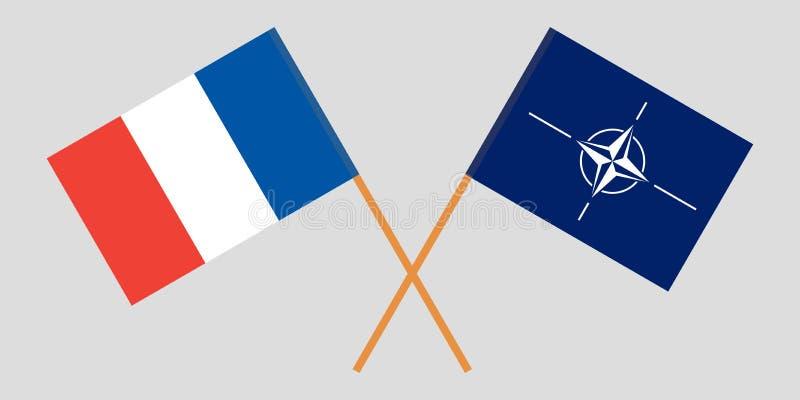 Indicadores franceses Colores oficiales Proporci?n correcta Vector libre illustration