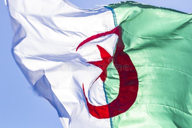 Indicateur algérien images libres de droits