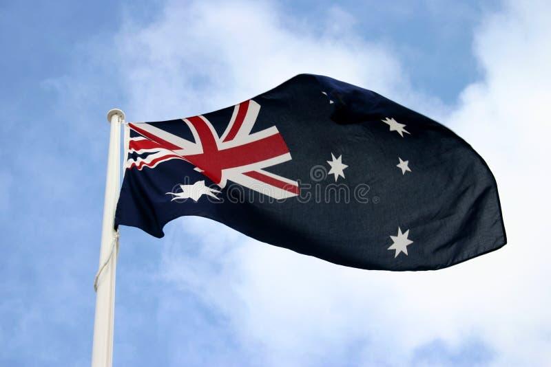 Indicateur australien image stock