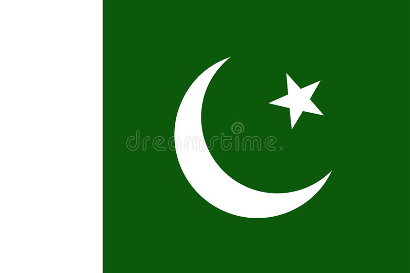 Indicateur du Pakistan illustration stock