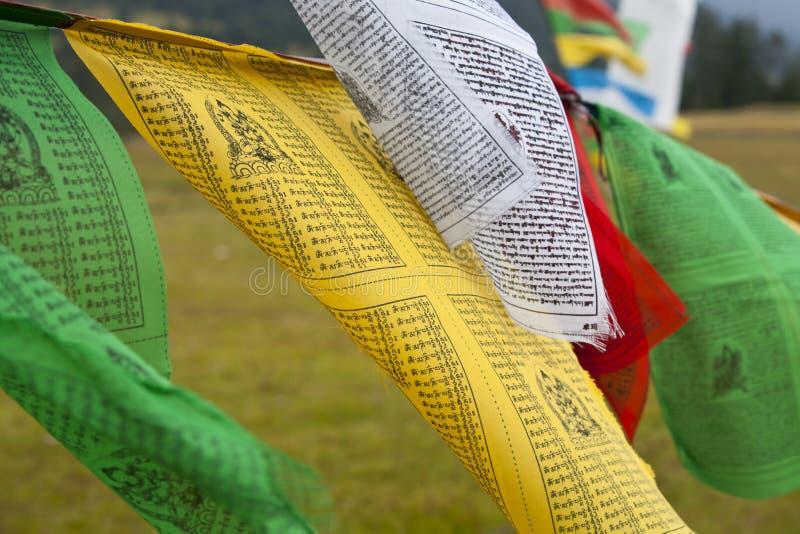 Indicateurs de prière du Thibet image libre de droits