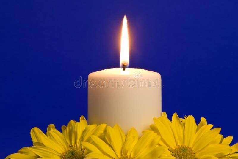 Indicatore luminoso della candela e margherite gialle fotografia stock