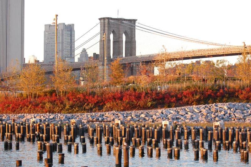 Indicatore luminoso di autunno sulla sosta del ponte di Brooklyn. fotografie stock