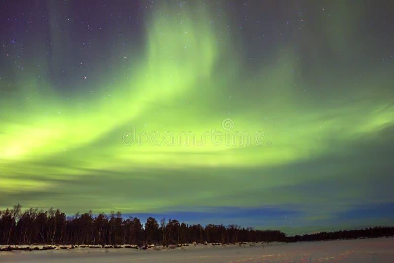 Indicatori luminosi nordici (borealis dell'aurora) sopra snowscape. fotografia stock libera da diritti