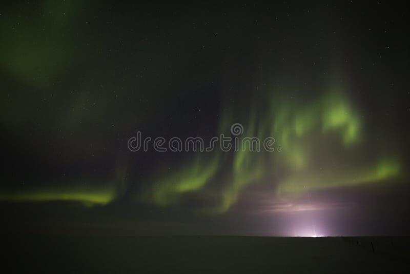 Indicatori luminosi nordici in cielo dell'Artide di notte immagine stock