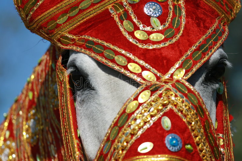 Indien-Prinzessin lizenzfreie stockfotos