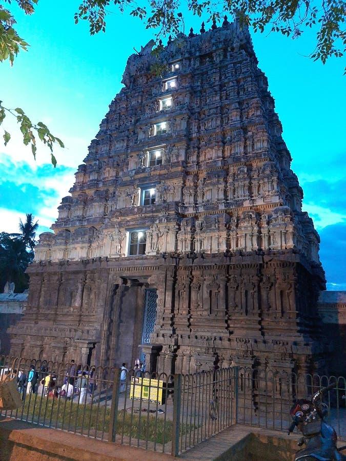 Indien södra indierShiva tempel gamla Architectur, vellore royaltyfri foto