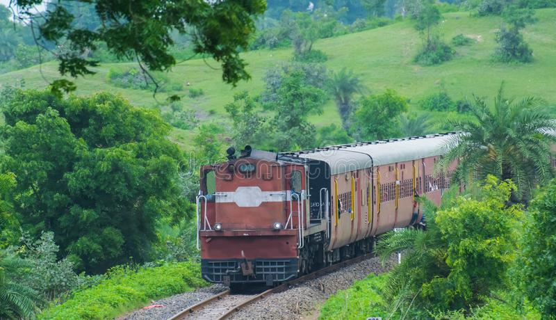 Indien-Schiene im Wald lizenzfreies stockbild