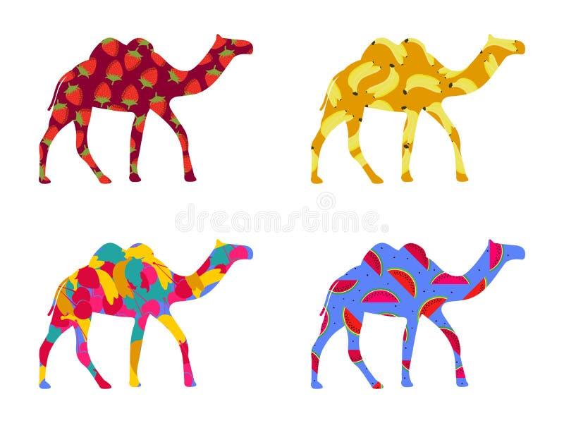 Indier för Bactrian kamel Kamel med en modell av bär och frukt som isoleras på en vit bakgrund klar vektor för nedladdningillustr royaltyfri illustrationer