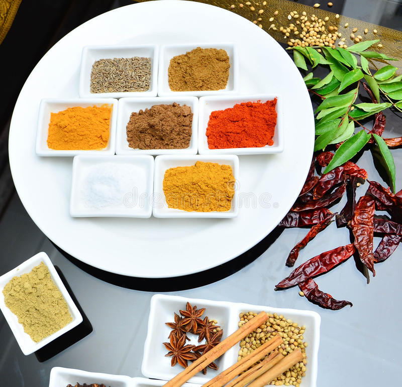 Indier- och matlagningkryddor royaltyfri bild